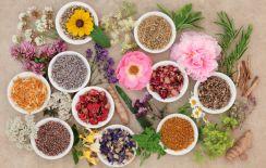 Istock chinese medicine